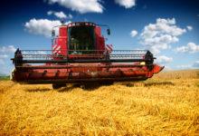 Zemědělci si nad výnosy letošních žní mohou mnout ruce
