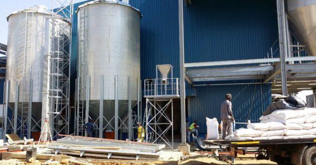 Češi vybudovali pivovar v Zambii. Pivo vaří z kukuřice