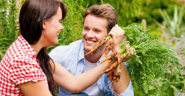 Mějte svého farmáře! Jak? Zapojte se do systému podporovaného zemědělství