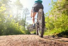 Na Moravě vzniknou tři speciální stezky pro cyklisty