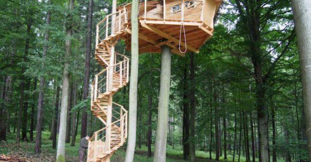 Přenocovat v korunách stromů můžete nově na Moravě