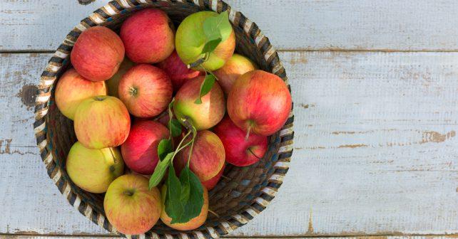 Kam vyrazit na ovoce poradí interaktivní mapa