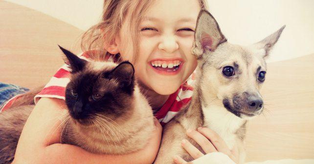 Web umožňuje pouhým kliknutím přispět na krmení opuštěných zvířat