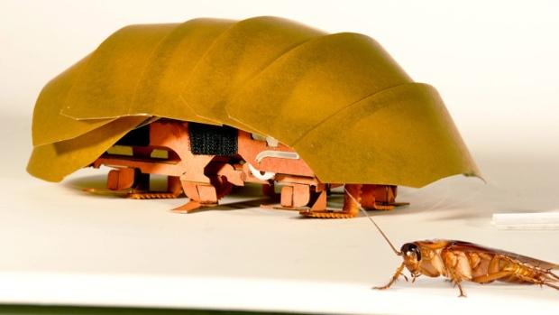 Nový typ robota podobný švábu pomůže při přírodních katastrofách