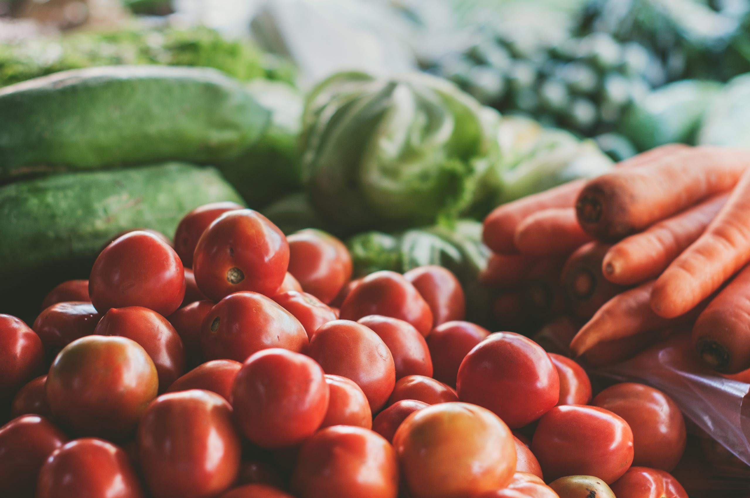 Rajčata mohou být v budoucnu zdrojem elektřiny