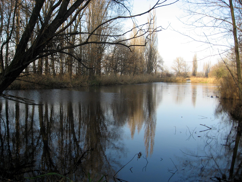 U Holáseckých jezer vzniknou rekreační místa i naučné stezky