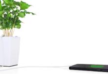 Speciální květináč umí nabíjet mobilní telefony i tablety
