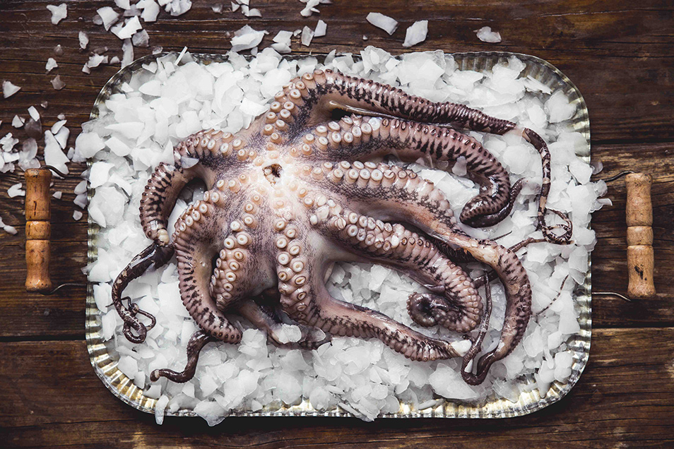 Česká food fotografka Novotná vyhrála v Londýně se snímkem chobotnice