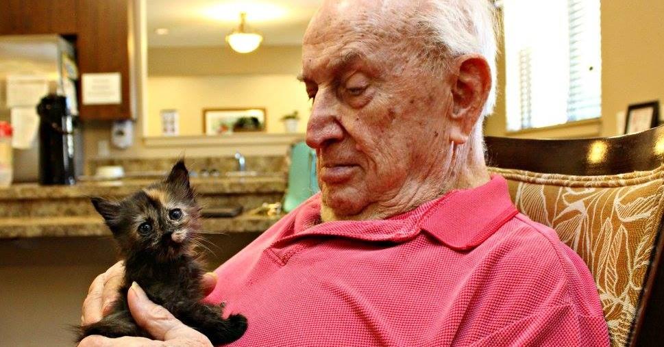 Senioři ze sanatoria trpící Alzheimerem či demencí pečují o opuštěná koťátka