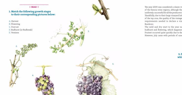 Česká učebnice angličtiny určená vinařům získala prestižní cenu German Design Award