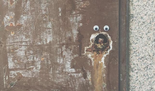 Neznámý umělec baví Uppsalu nalepováním očí ve veřejném prostoru