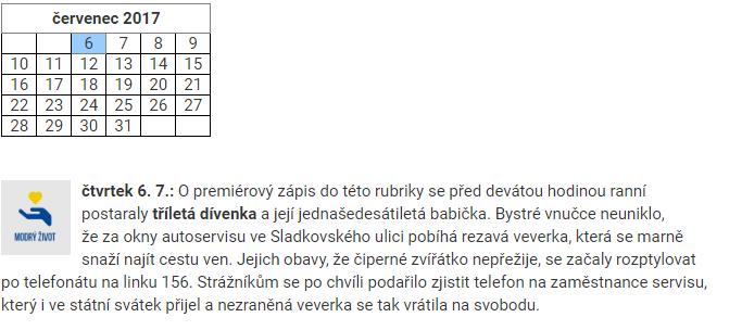 Strážníci v Brně začali zveřejňovat dobré zprávy ze své práce