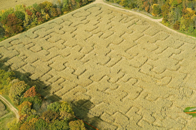 V Česku se rozšiřuje nová atrakce – soutěžení v kukuřičném labyrintu