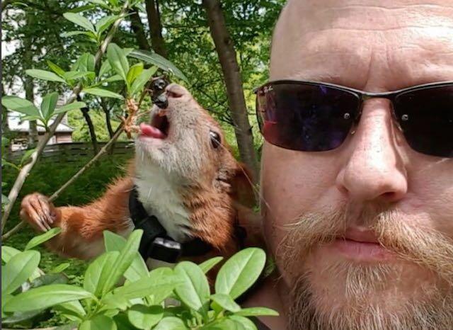 Muž zachránil veverku a stal se jejím nejlepším přítelem