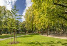 Parkem roku 2017 jsou Jiráskovy sady v Litoměřicích