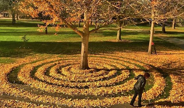 Američanka objevila při hrabání listí své kreativní já
