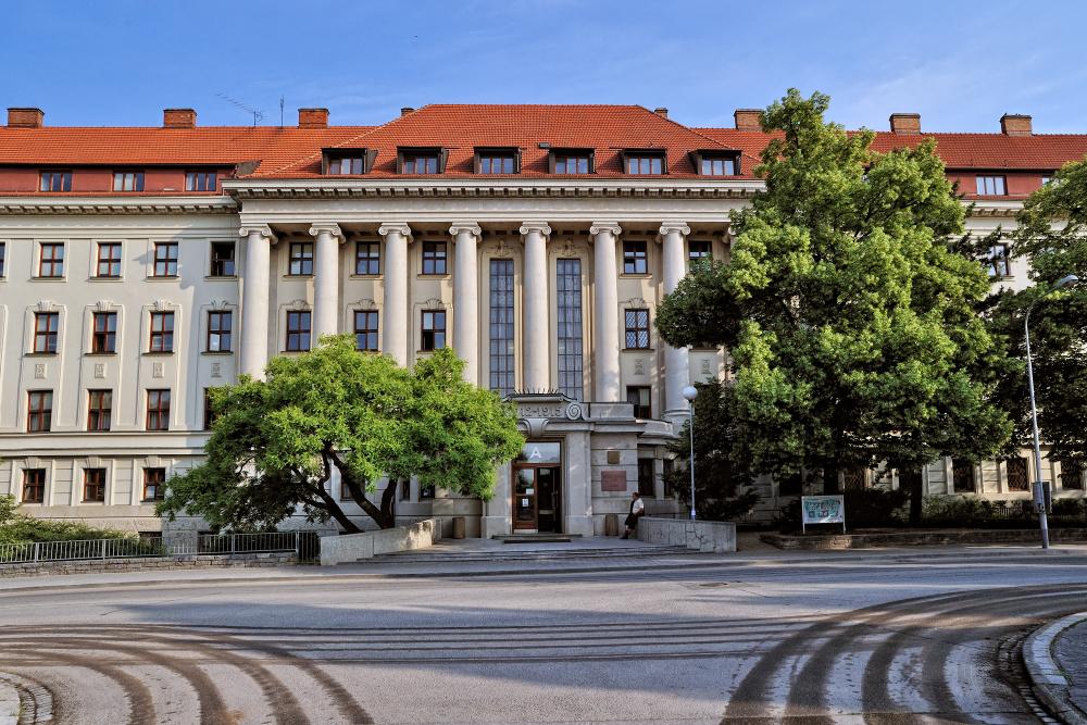 Český profesor přišel na objev, který může zefektivnit léčbu rakoviny