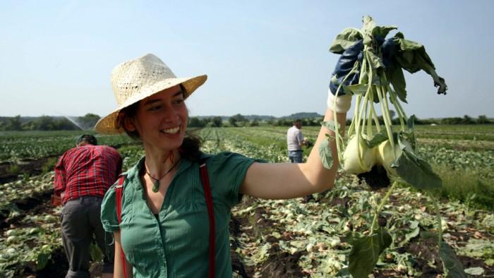 Zachraň jídlo uvaří polévku z plodin získaných paběrkováním
