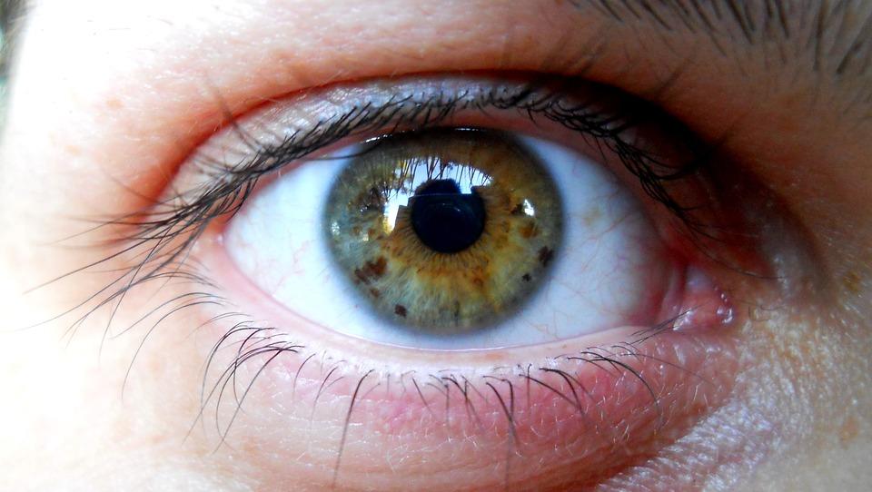 Britští vědci vracejí lidem pomocí kmenových buněk zrak