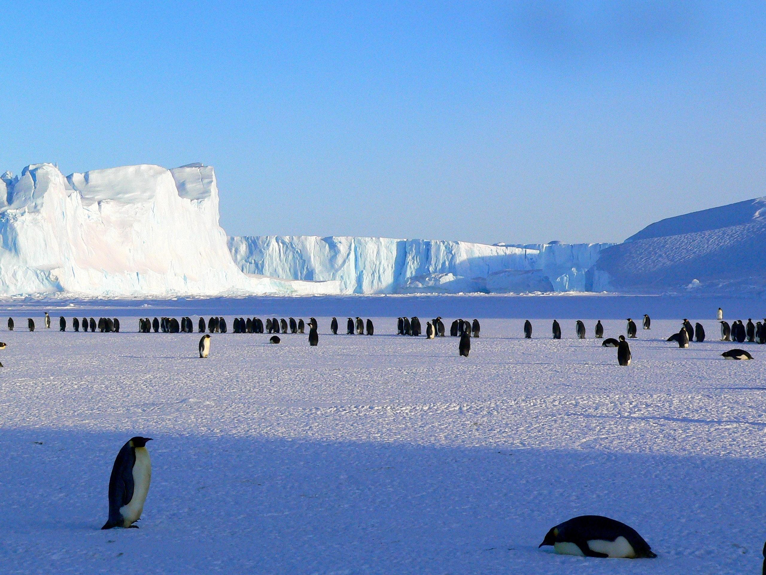 Čeští vědci objevili na Antarktidě tři jezera
