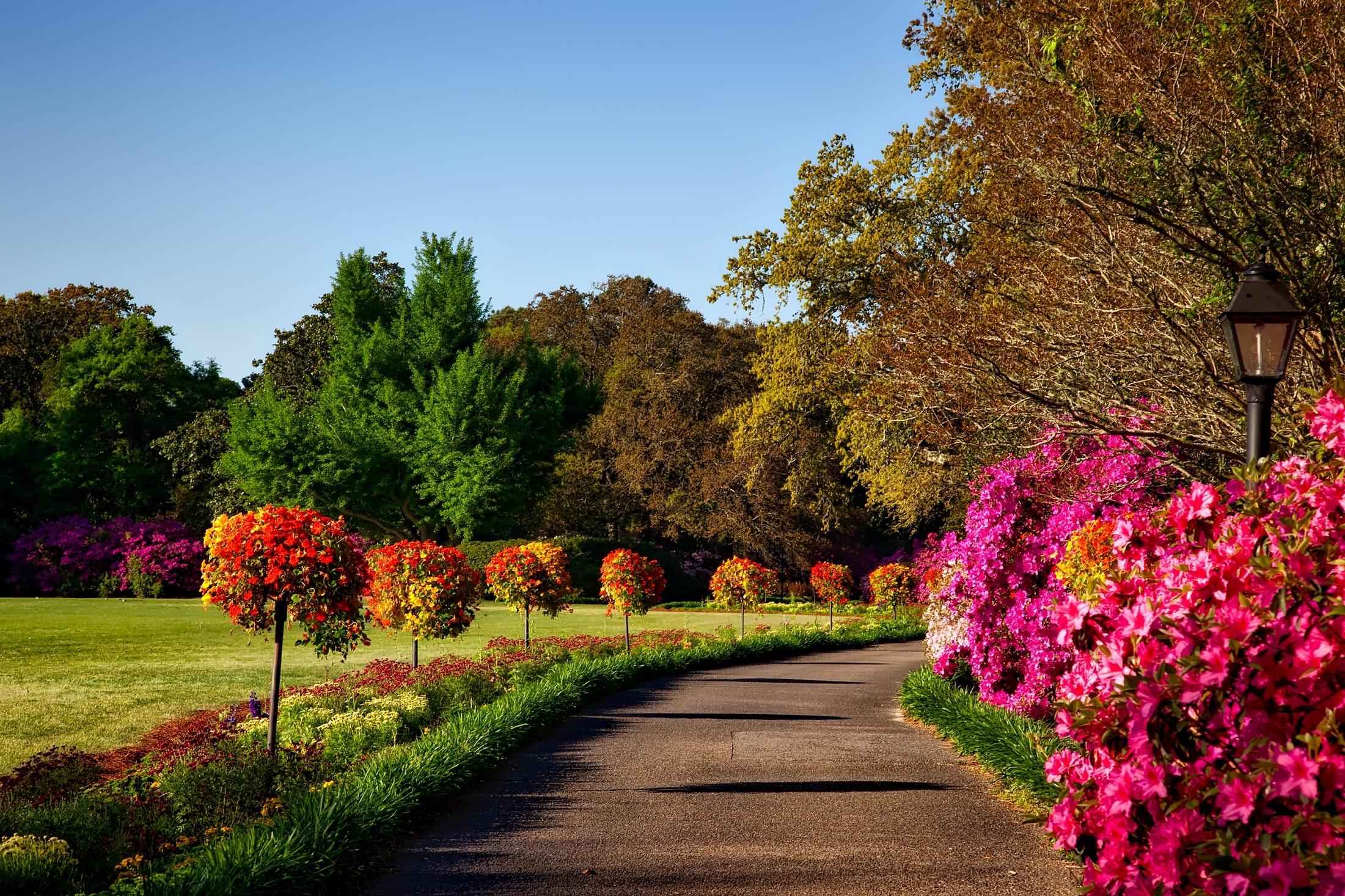 Projekt DoZahrad přibližuje krásu zahrad a parků nejen nevidomým