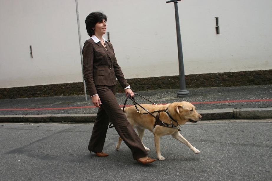 Jak na ulici pomoci nevidomému? Poradí videospoty