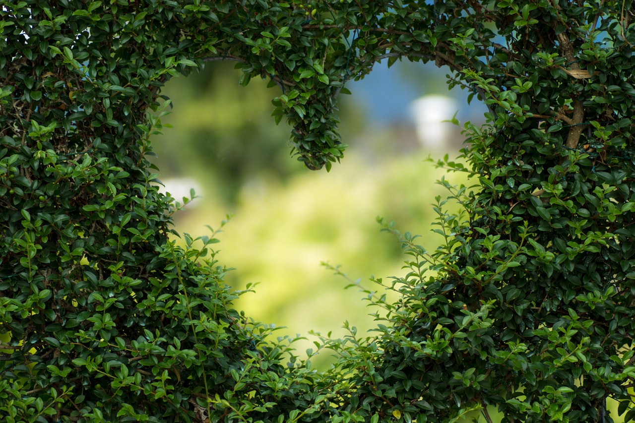 Zelená terasa simulující přírodu pomáhá pacientkám v léčbě