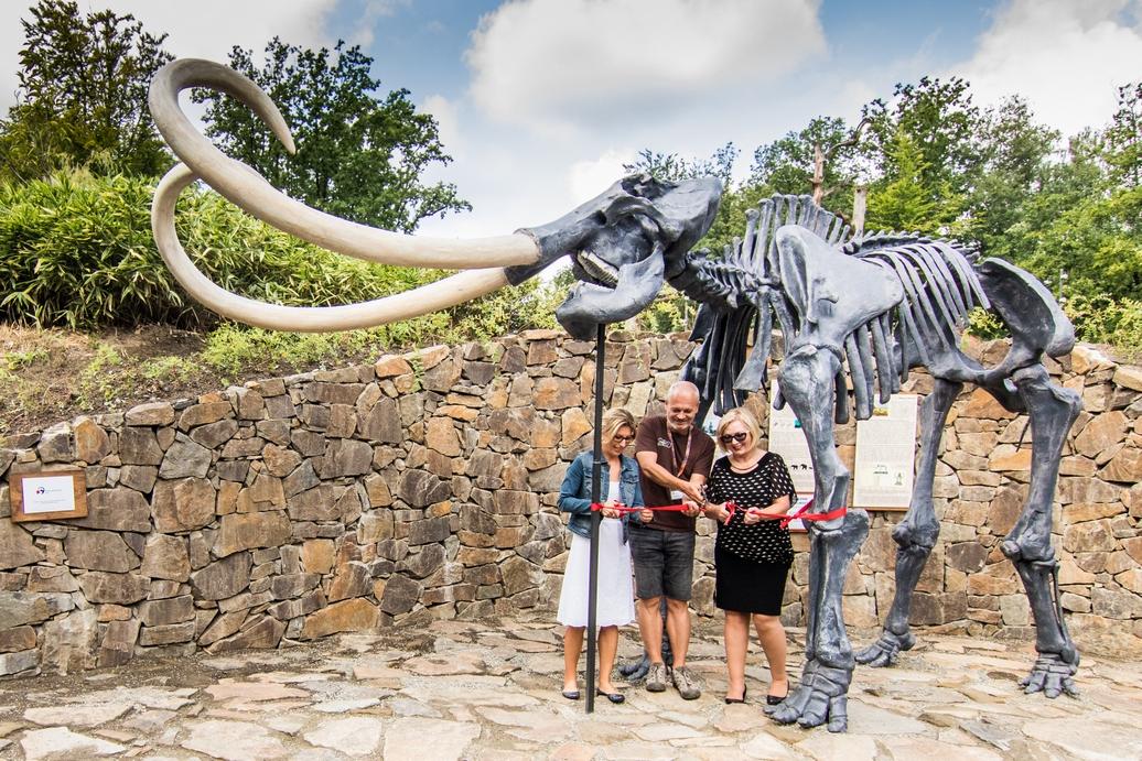 Ostravská zoo má novou kostru mamuta. Upozorňuje na ochranu vzácných druhů
