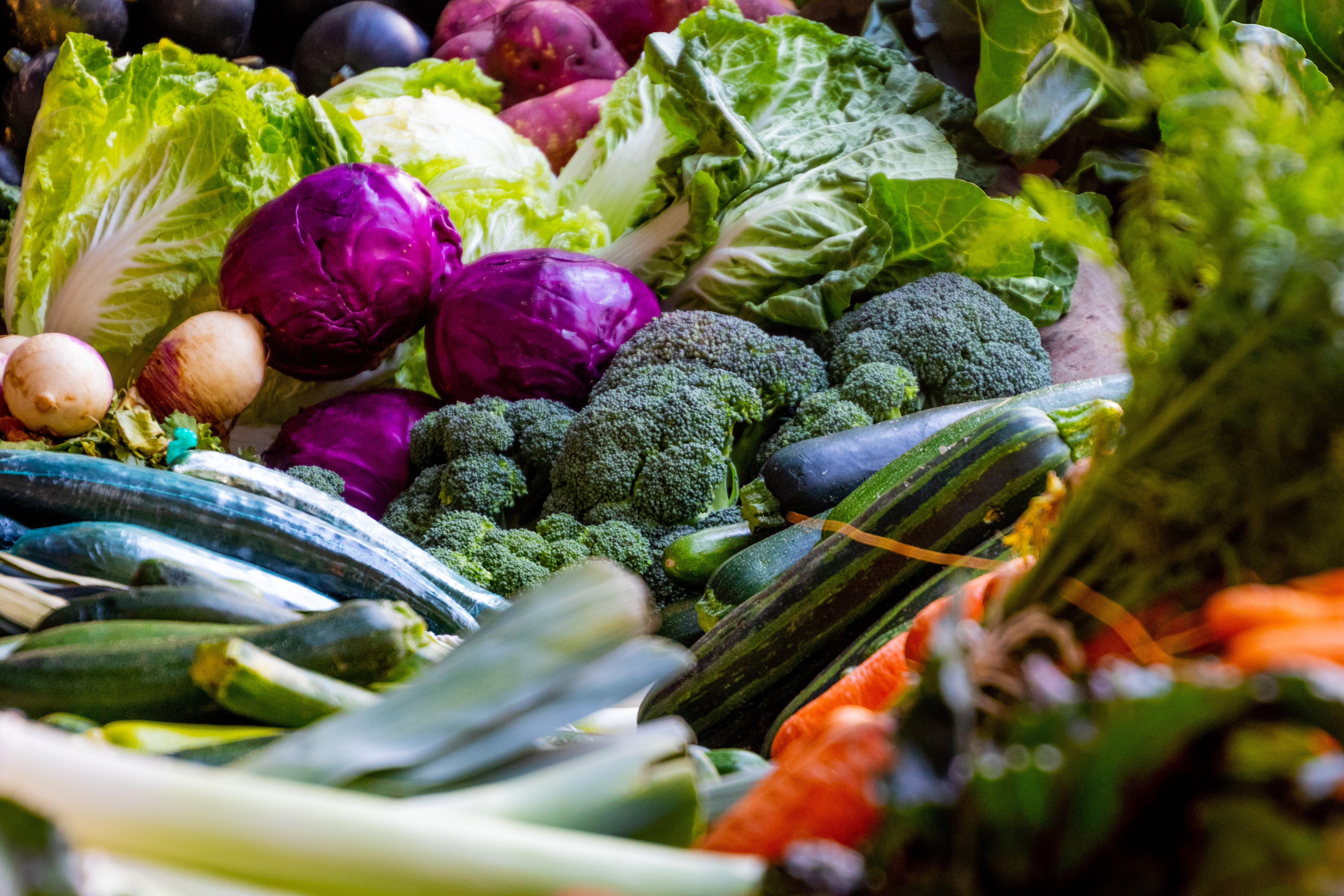 Akce Disco salát nabídne veřejnosti salát ze zachráněné zeleniny
