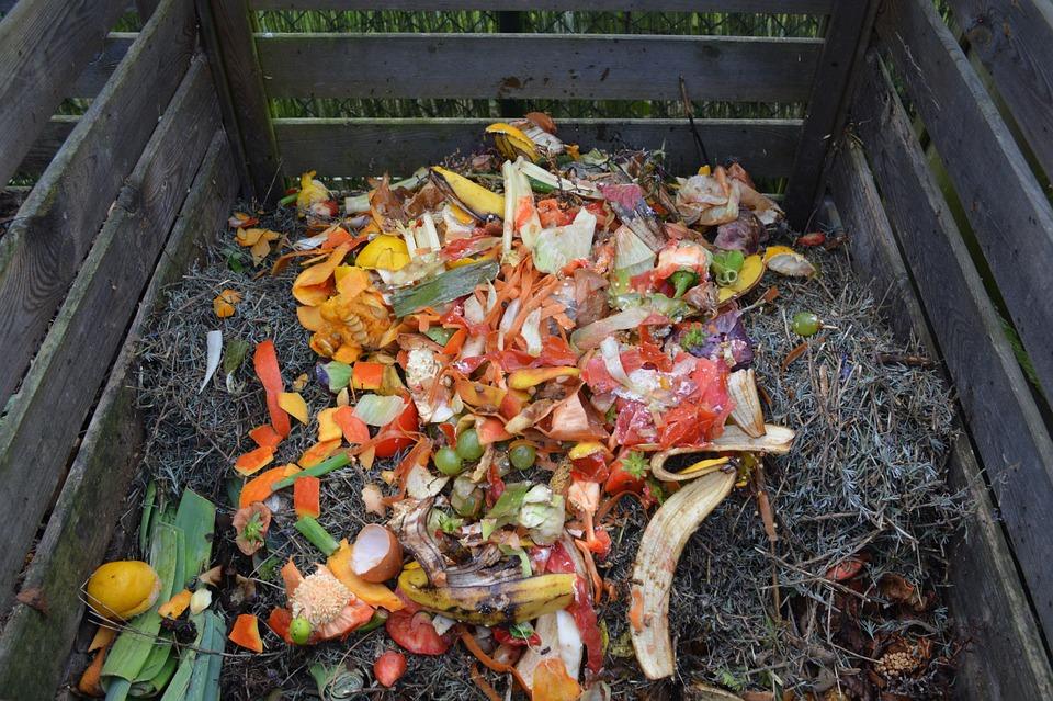 Brňané si mohou od města pořídit kompostér za třetinovou cenu