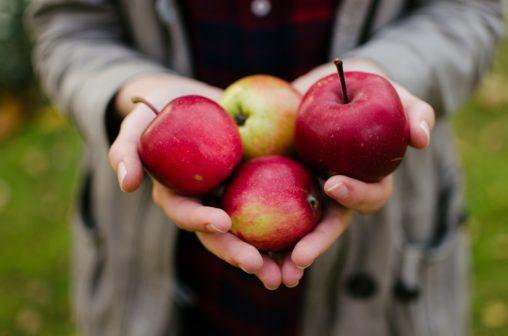 Online tržiště Sousedova zahrada nachází přebytkům ze zahrádky vděčné strávníky