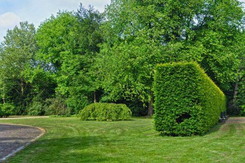 Obec Poříčí u Litomyšle pečuje o zeleň nejlépe v celé Evropě