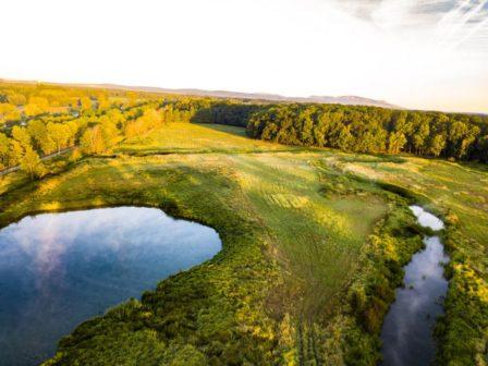 Podnikatel vybudoval na Břeclavsku unikátní oboru za sto milionů