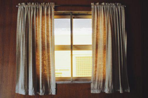 Vědci z Oregonu: Pusťte si domů sluneční světlo, dezinfikuje