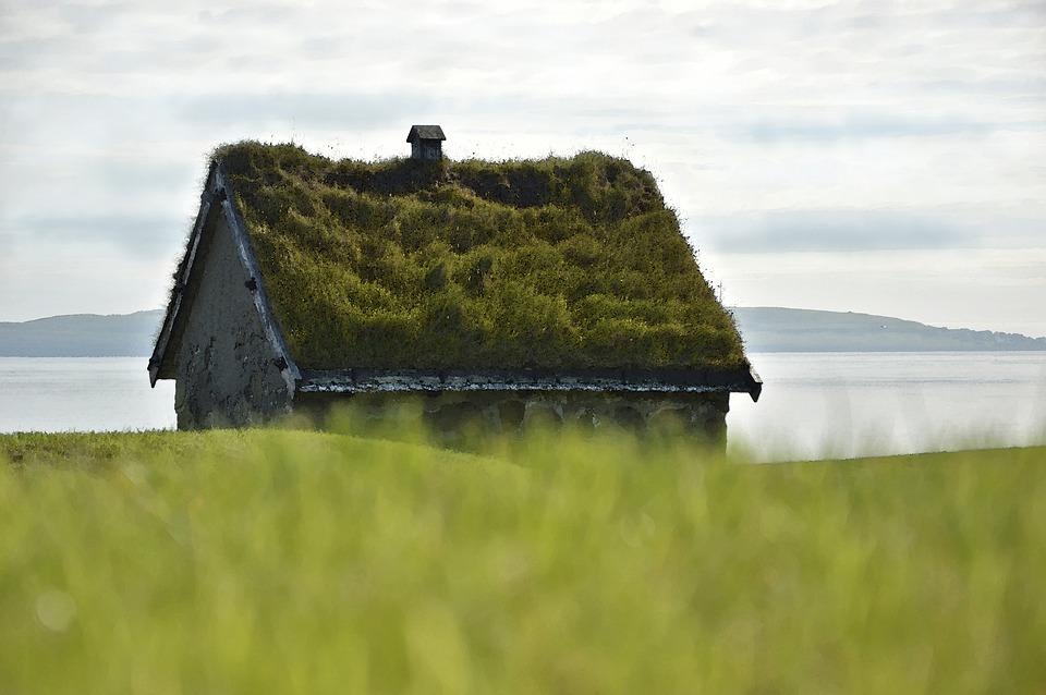Brňané mohou žádat o příspěvek na vybudování střechy plné zeleně