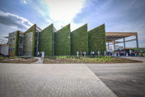 Práce mezi květinami. Unikátní svářečská hala u Brna dává ochraně klimatu zelenou
