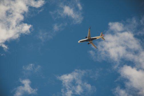 Létáte, ale máte výčitky svědomí kvůli přírodě? Spočítejte si, kolik po každém letu vysadit stromů