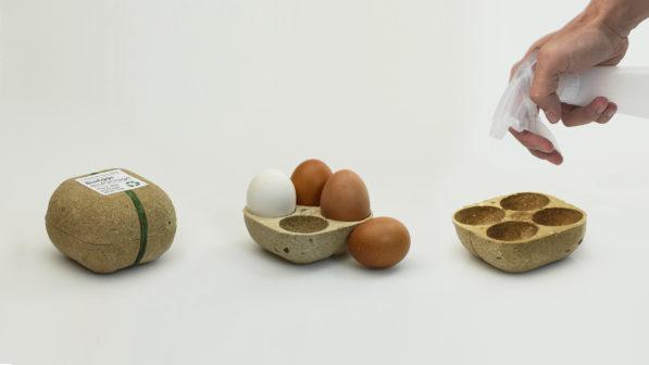 Originální eko obal na vejce se po použití promění v rostlinu
