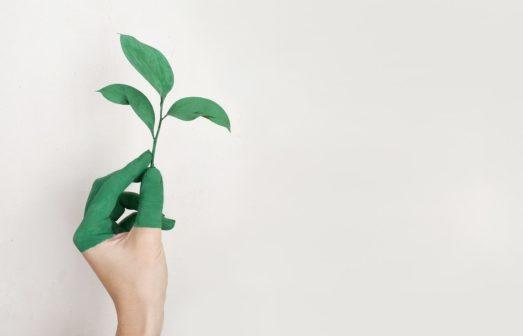 Máš na míň: Kampaň vyzývá ke snížení odpadu, plýtvání i nákupů