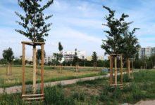 Park na pražském Chodově prošel revitalizací. Přibyly stromy i cesty