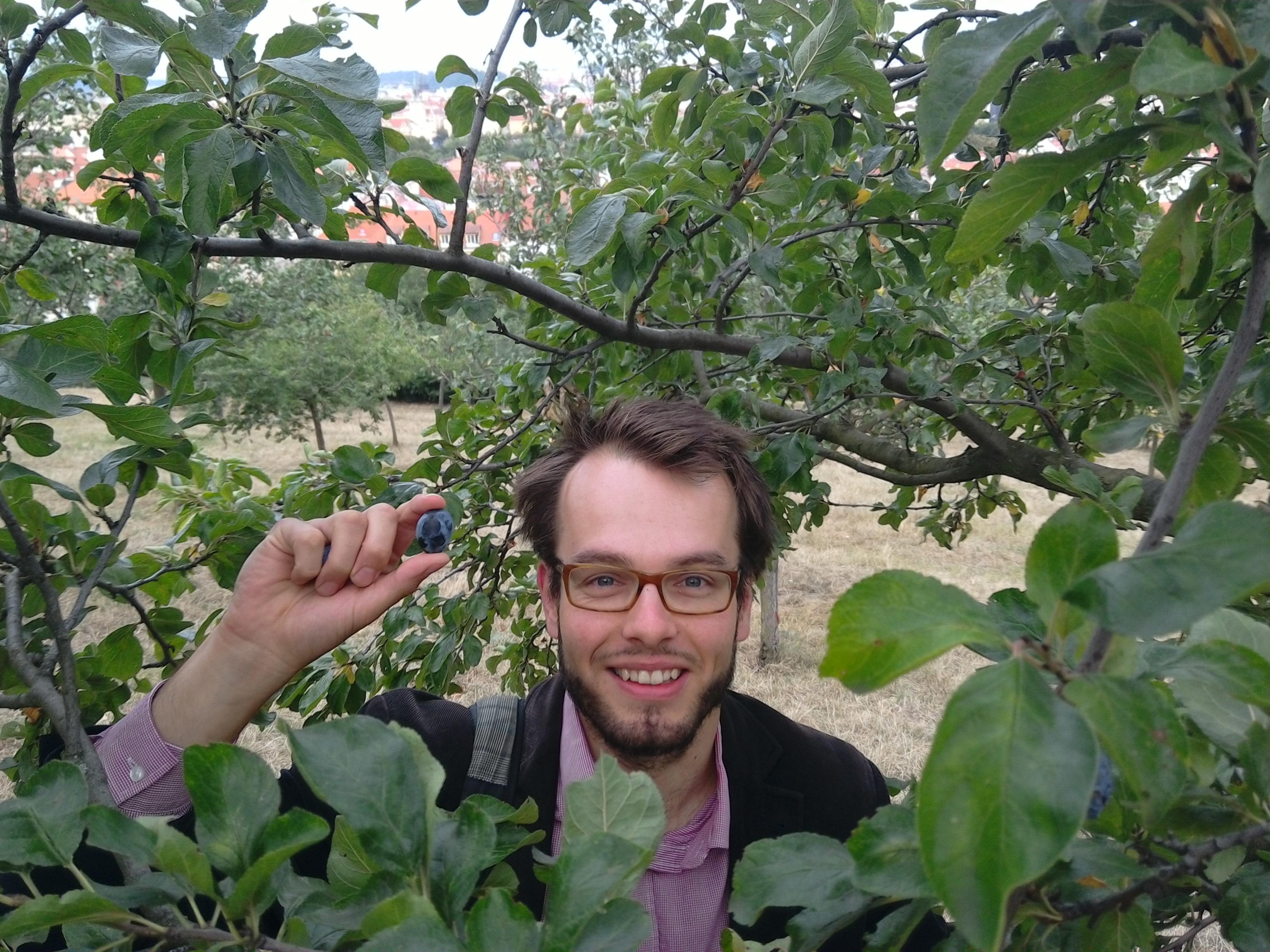 Kam legálně na ovoce a bylinky? Poradí interaktivní aplikace
