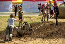 Země živitelka letos zdůrazní environmentální vztah kzemědělství