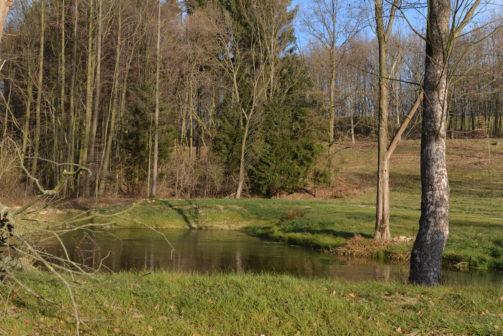 Liberecký kraj podpoří zadržování vody vkrajině