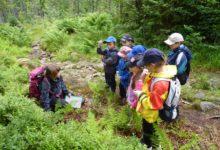 Národní park Šumava míří do škol. Nový projekt pomůže rozvoji environmentálního vzdělávání