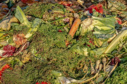 Brno rozdá svým občanům tři tisíce kompostérů zdarma