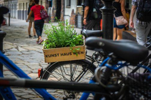 Vídeň odmění občany nejezdící autem vstupenkami na kulturu