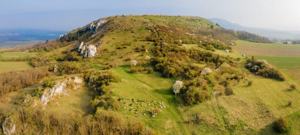 Stolová hora Pálava